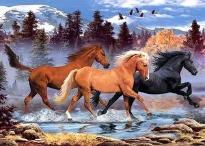 Коні схема для вишивання