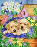 Собачки в кошику схема для вишивання