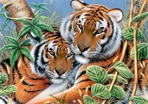 Тигри схема для вишивання
