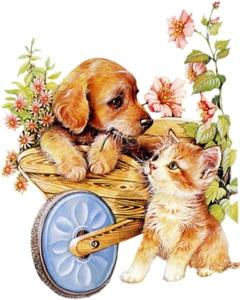 Котик і песик схема для вишивання