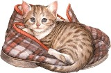 Котик в тапочках схема для вишивання