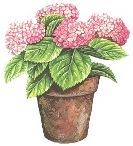 Квітучий вазон схема для вишивання