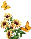 Жовті метелики схема для вишивання