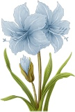 Голубі лілії схема для вишивання