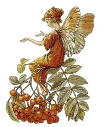 Осіння фея схема для вишивання
