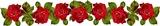 Бордюр з червоними розами схема для вишивання