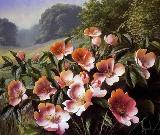 Кущ квітів схема для вишивання