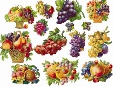 кліпарт фрукти png