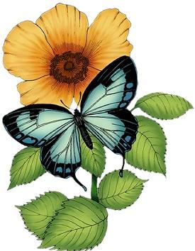 Метелик з квіткою схема для вишивання