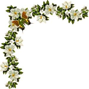 Кутик з білими квітами схема для вишивання
