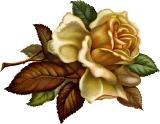 Осіння роза схема для вишивання
