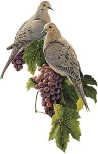 Голуби і виноград схема для вишивання