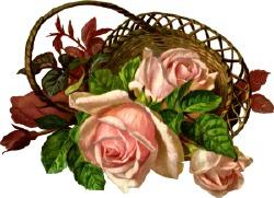 Осінні рози в кошику схема для вишивання